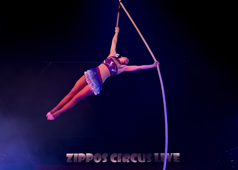Zippos Circus at Winter Wonderland
