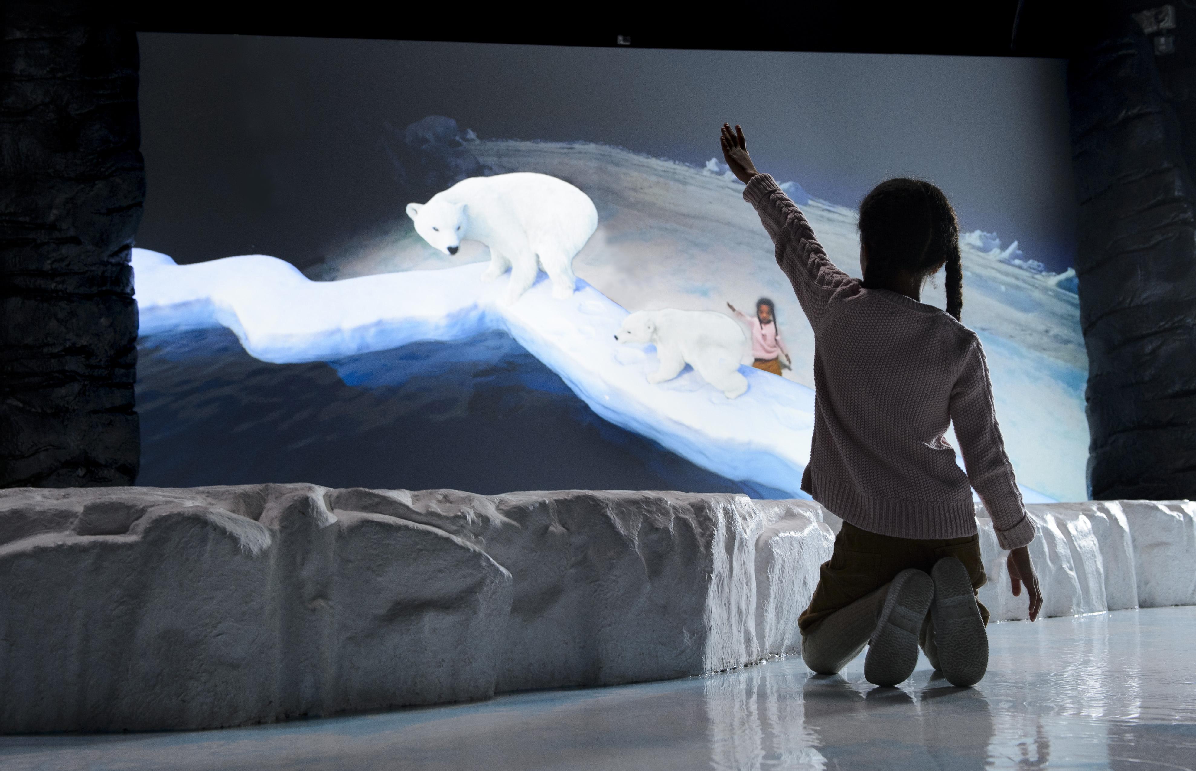 SEA LIFE London Aquarium Frozen Planet Face to Face