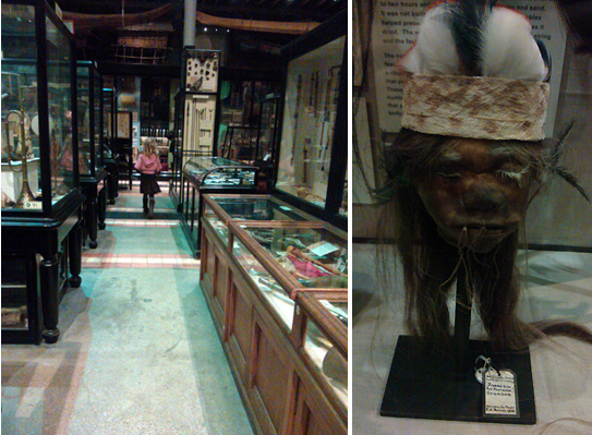Pitt Rivers Oxford