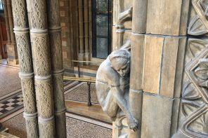 Breadcrumbs Natural History Museum trail - monkey relief carving